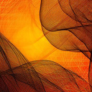 Netted Orange by Constance Krejci
