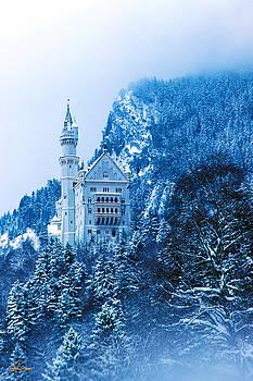 Neuschwanstein Castle - Germany by Stephen Fanning