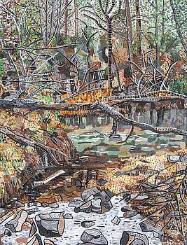 Neuse River at Buffaloe Road 2 by Micah Mullen