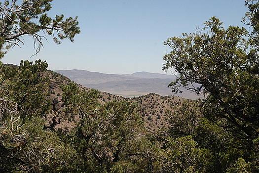 Nevada High Desert  by James Thompson