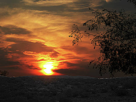 Nevada Sunrise by Alan Socolik