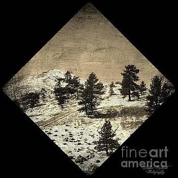 Nevada Touch by Bobbee Rickard