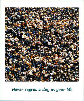 Susanne Van Hulst - Never Regret a Day