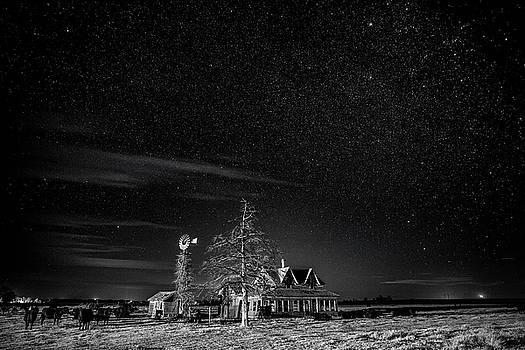 Neverwinter by Sean Ramsey