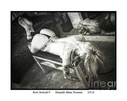 New Arrival V by Donald Yenson