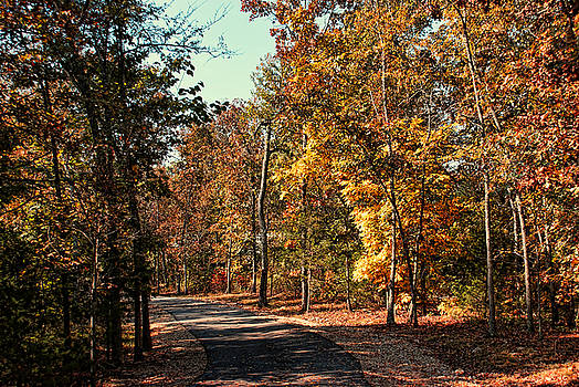 New Autumn Trail by Rick Friedle