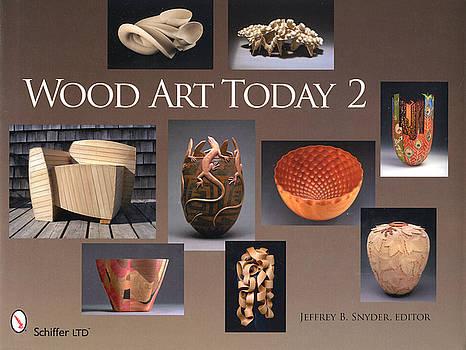 New Book Wood Art Today by Scott Reuman
