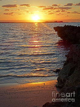 New Day Dawning by Lainie Wrightson