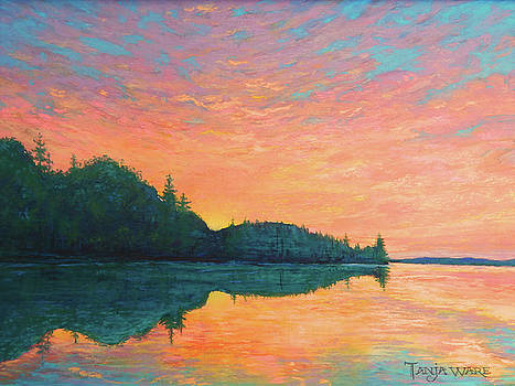 New Day Dawning by Tanja Ware
