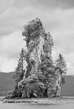 New Eddystone Rock by Peter J Sucy