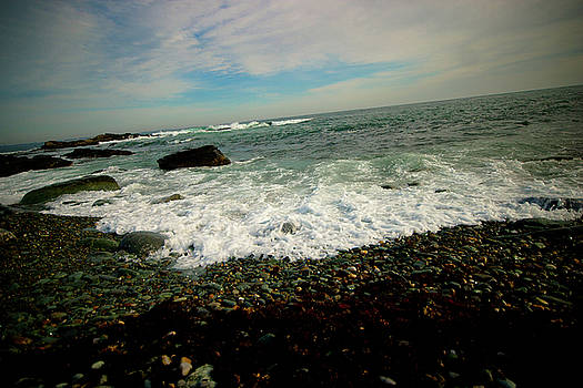 New England Coastline by Susan Schumann