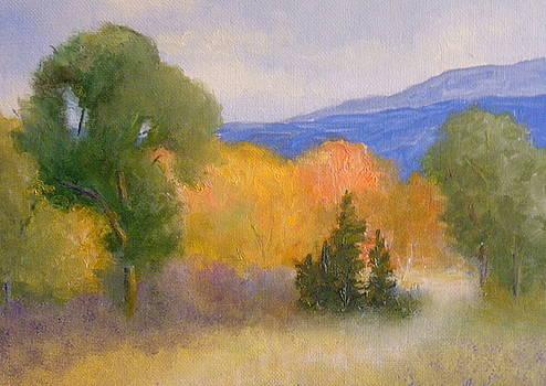 New England Fall by Scott W White