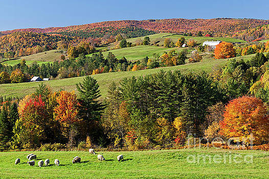 New England Idyllic Autumn by Alan L Graham