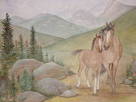 New Foal in the Foothills by Patti Lennox