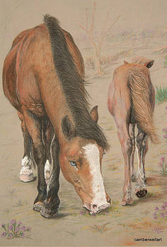 New Forest Mare and Foal by Jan Lowe