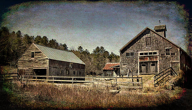 New Hampshire Old Barn  by Betty Pauwels
