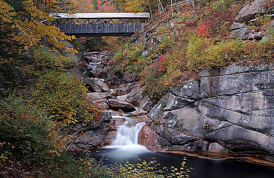 Juergen Roth - New Hampshire Sentinel Pine Bridge