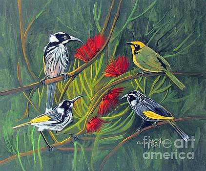New Holland Honeyeaters with a Yellow Tufted Honeyeater by Audrey Russill