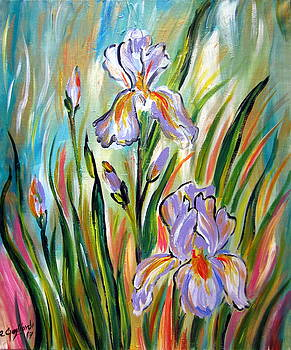 New Irises by Roberto Gagliardi