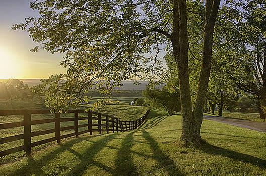New Jersey Splendor by Eleanor Bortnick