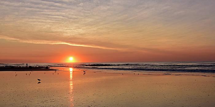 New Jersey Sunrise by Dan Myers