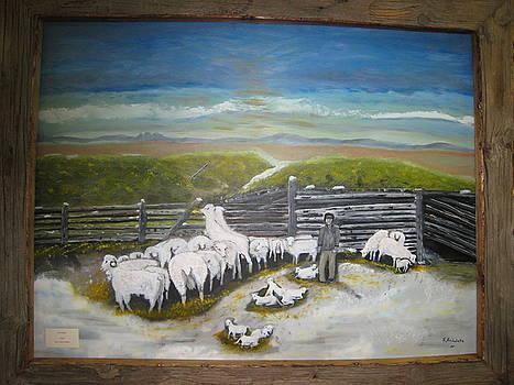 New Lambs by Floyd Archuleta