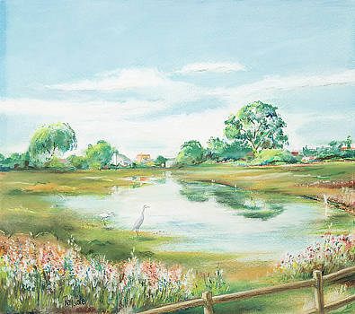 New Marsh by Ray Cole