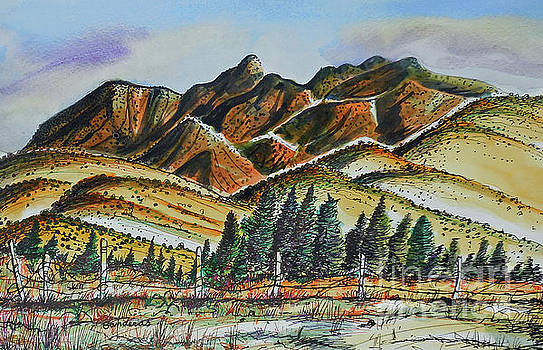 New Mexico Back Country by Terry Banderas