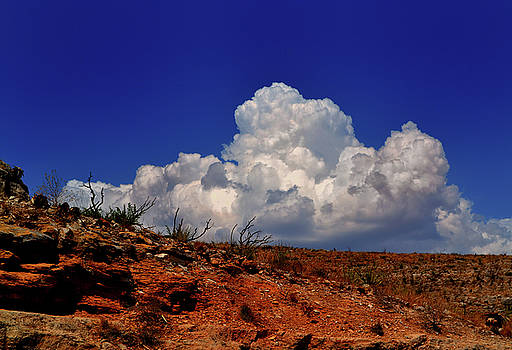 New Mexico Desert Sky 002 by George Bostian