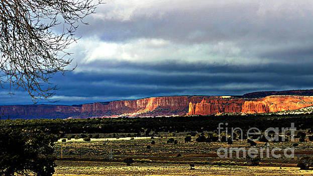 Jenny Revitz Soper - New Mexico Horizon