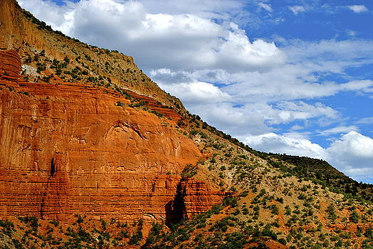 New Mexico by Wendy Girard