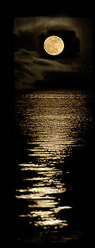 New Moon by Klaus Bohn