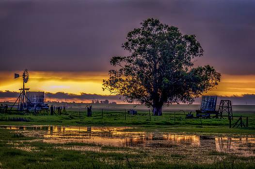 Bruce Bottomley - New Morning Sunrise
