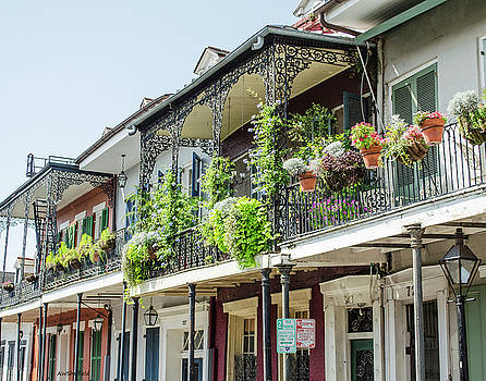 Allen Sheffield - New Orleans - Architecture - Balconies