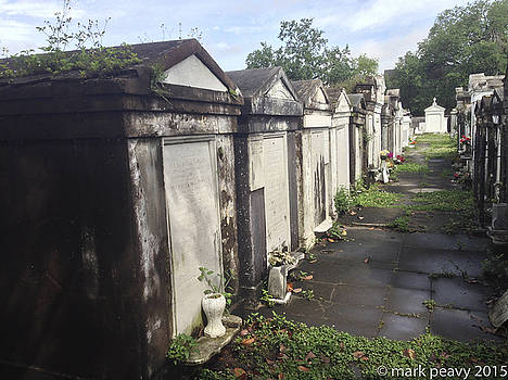 New Orleans Cemetery by Mark Peavy