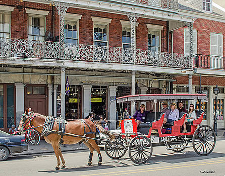 Allen Sheffield - New Orleans - Horse Drawn Carriage