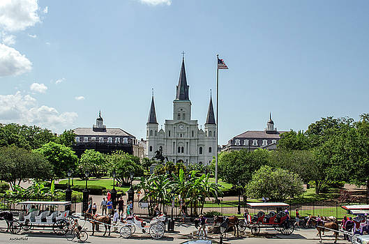 Allen Sheffield - New Orleans - Jackson Square