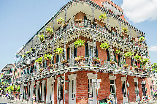 Allen Sheffield - New Orleans - Typical Building