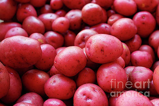 New red potatoes for sale in a market by Louise Heusinkveld