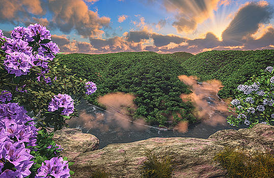 New River Gorge Grandview by Mary Almond