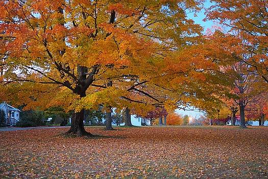 New Salem Town Common in the Late Afternoon by Trace Meek