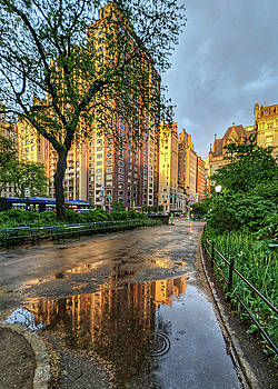 New York - After the Storm by Cameron Dixon
