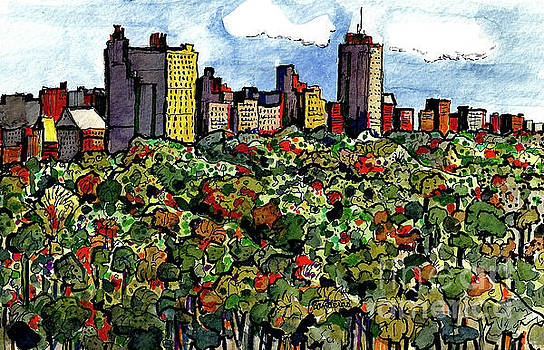 New York Central Park by Terry Banderas
