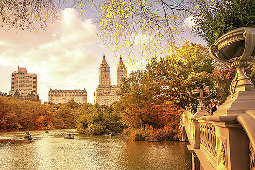 New York City Autumn Landscape by Vivienne Gucwa