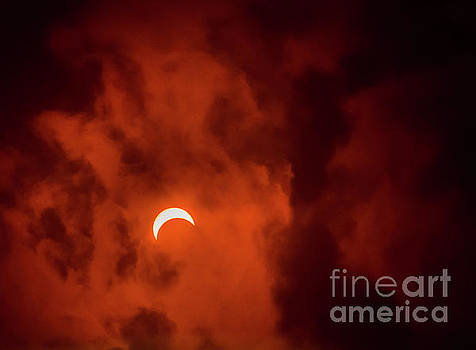 New York City Eclipse by Reynaldo Brigantty