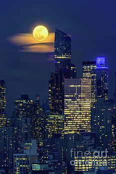 Regina Geoghan - New York City -  Full Snow Moon