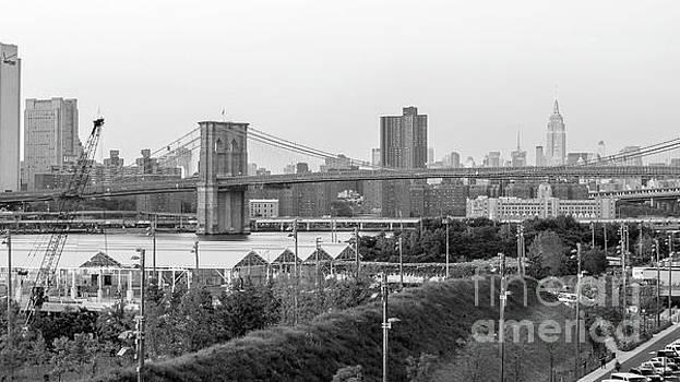 Silvia Bruno - New York City
