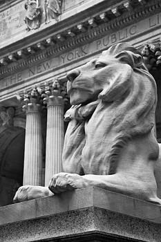 New York Public Library by Heidi Reyher