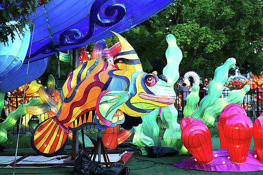 New York State Chinese Lantern Festival 34 by David Stasiak