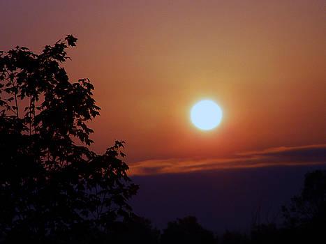 New York Sunset by Reni Boisvert